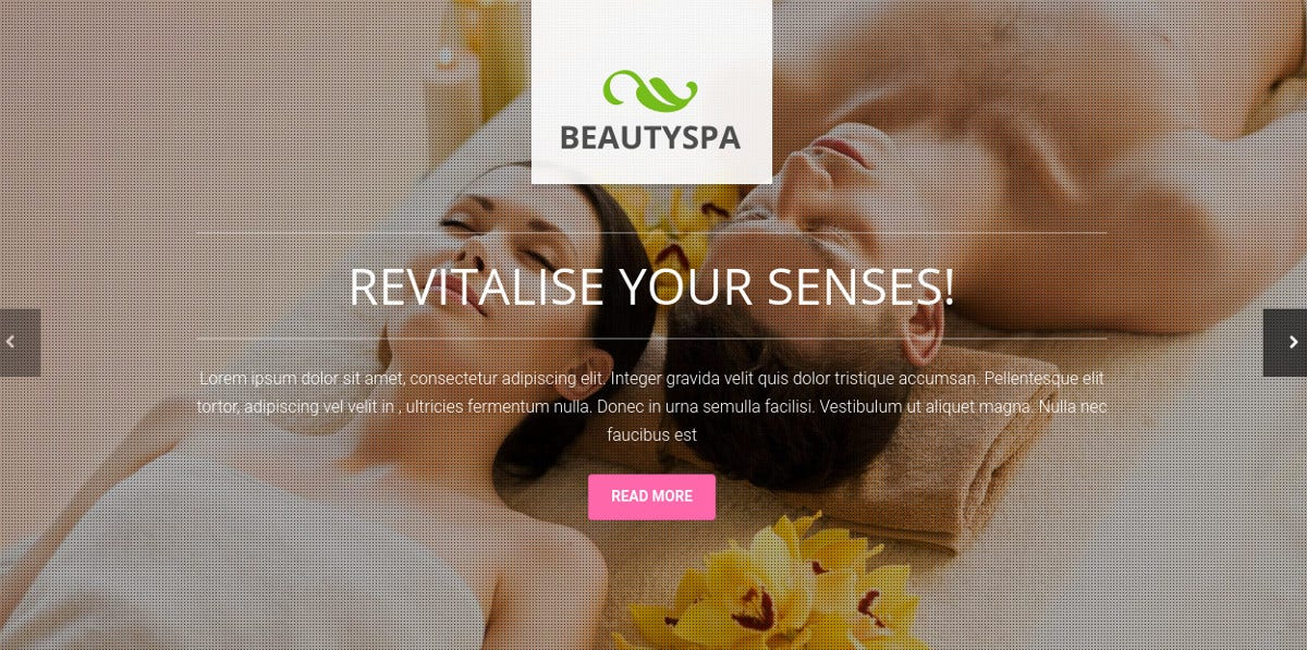 Fairness, Health & Spa Landing Page Template $12