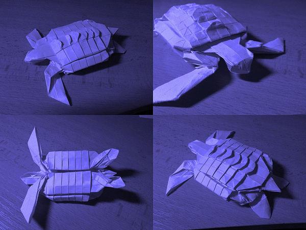 Turtle Paper Art