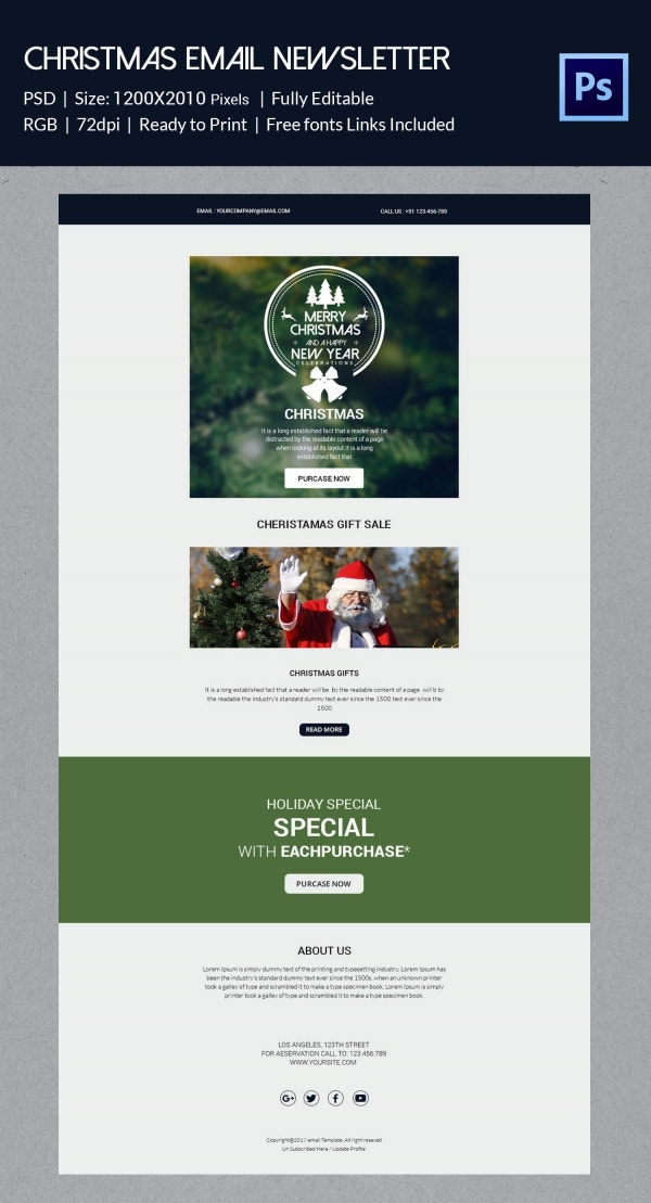Christmas Gift Sale Email Newsletter