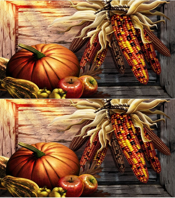 thanksgiving harvest holiday background
