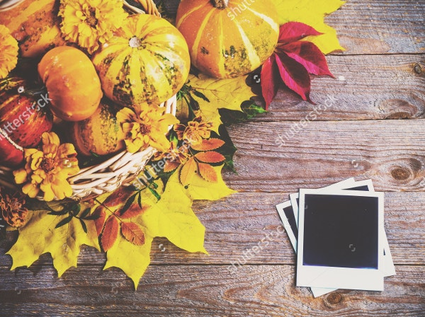 Thanksgiving Photography Template Download