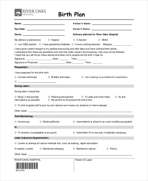 Birth plan template 9 free word pdf documents download for Sample birth plans templates