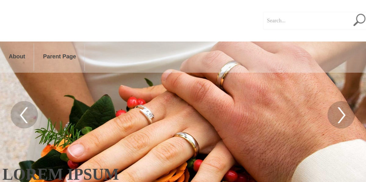 wedding photographers free wordpress website theme
