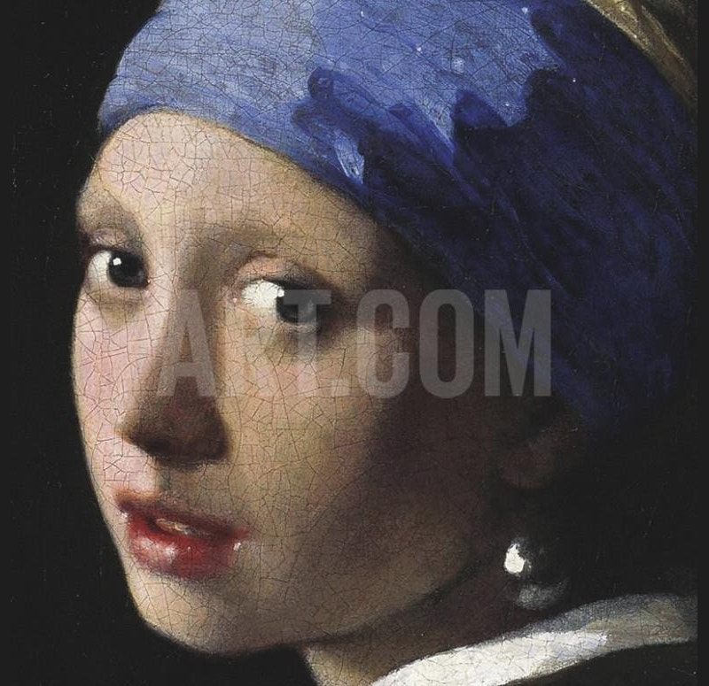 girl with pearl ear ring by jan vermeer