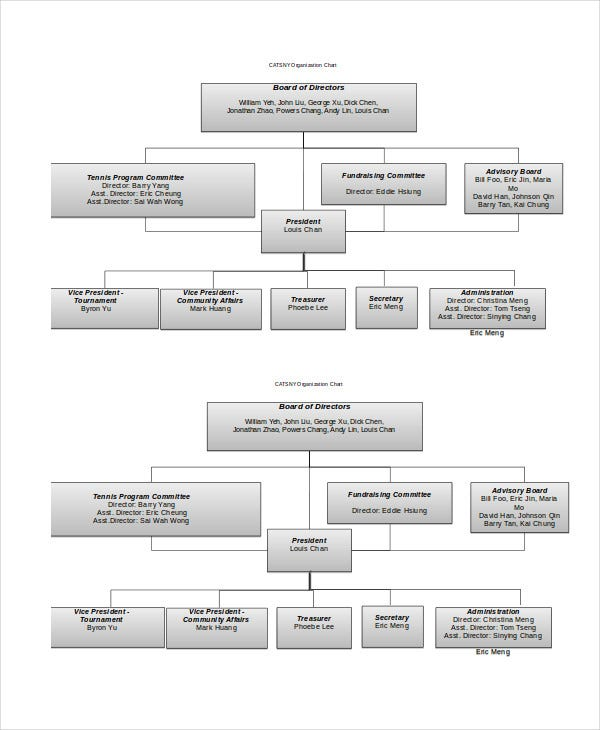 Organizational Chart 9 Free Word PDF Documents Download Free