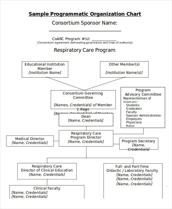 sample programmatic organization chart