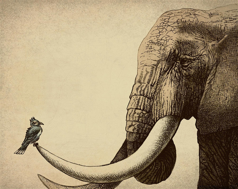 creative-elephant-drawing