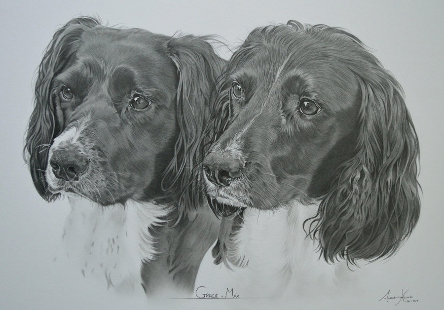 Pencil Art of Dog