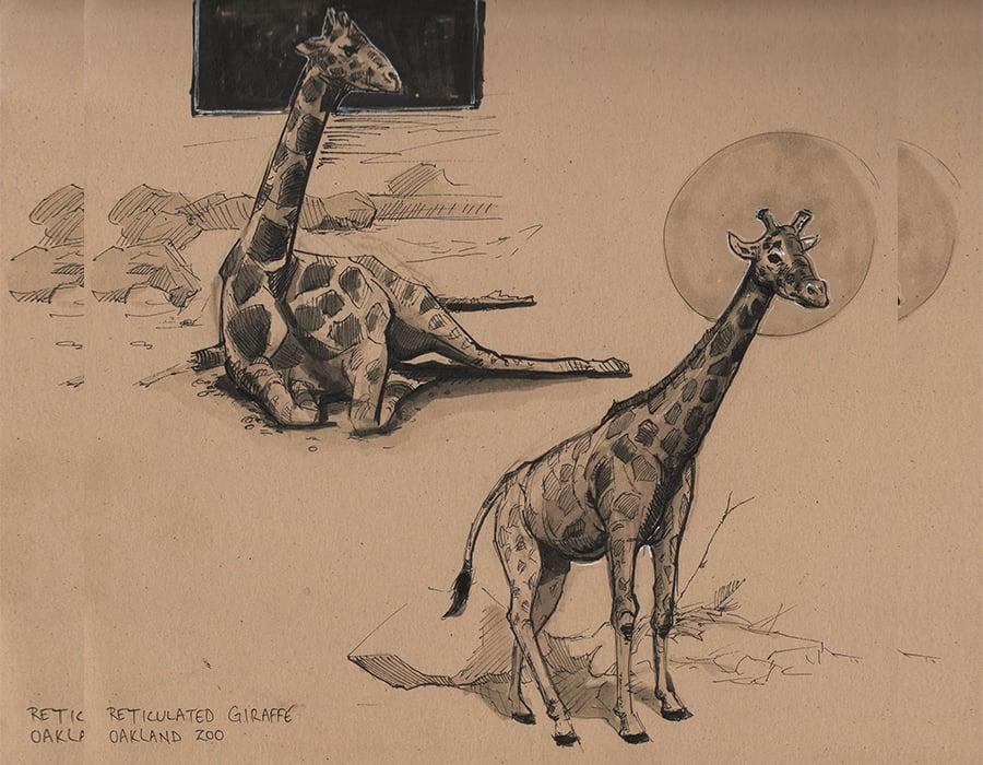giraffe by jayna pavlin