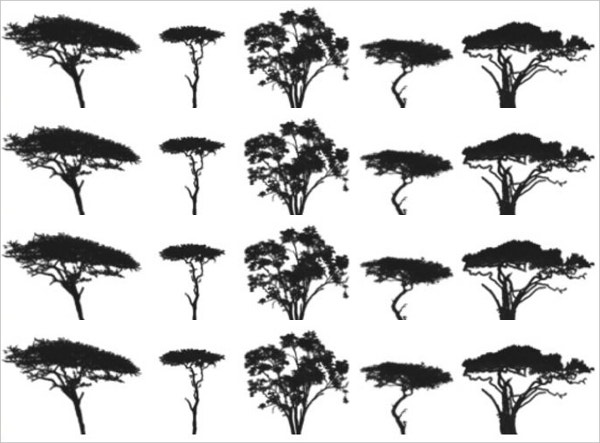 Different Kinds of Trees Brushes Silhouettes