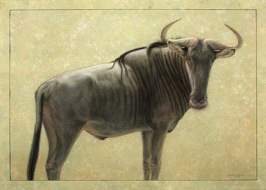 Wildebeest Art by James W Johnson