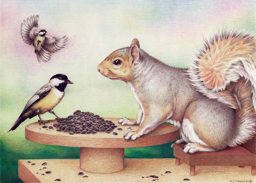 Beautigul Squirrel Drawing