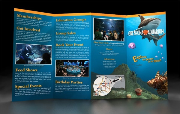 Elegant Aquarium Brochure Template
