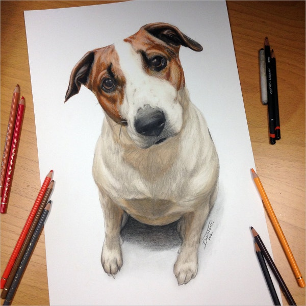 Cool Dog Drawing
