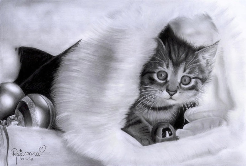 beautiful art of christmas cat