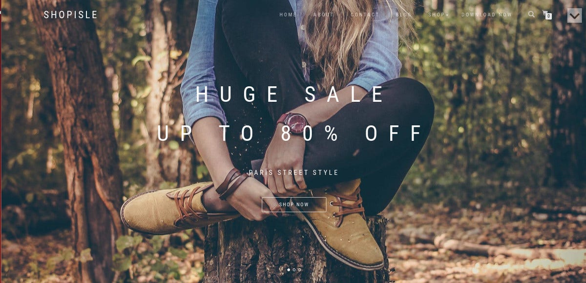 free-wordpress-ecommerce-theme-for-online-stores