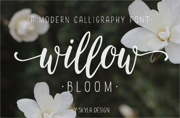 willow bloom calligraphy font