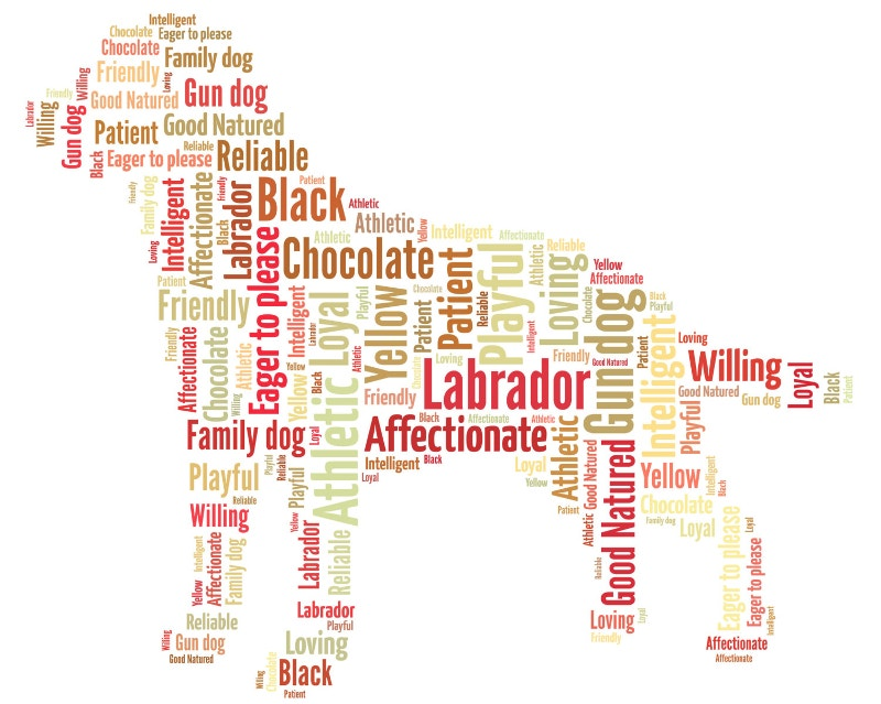 personalised dog word art