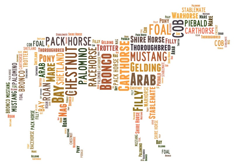 clean horse word art design