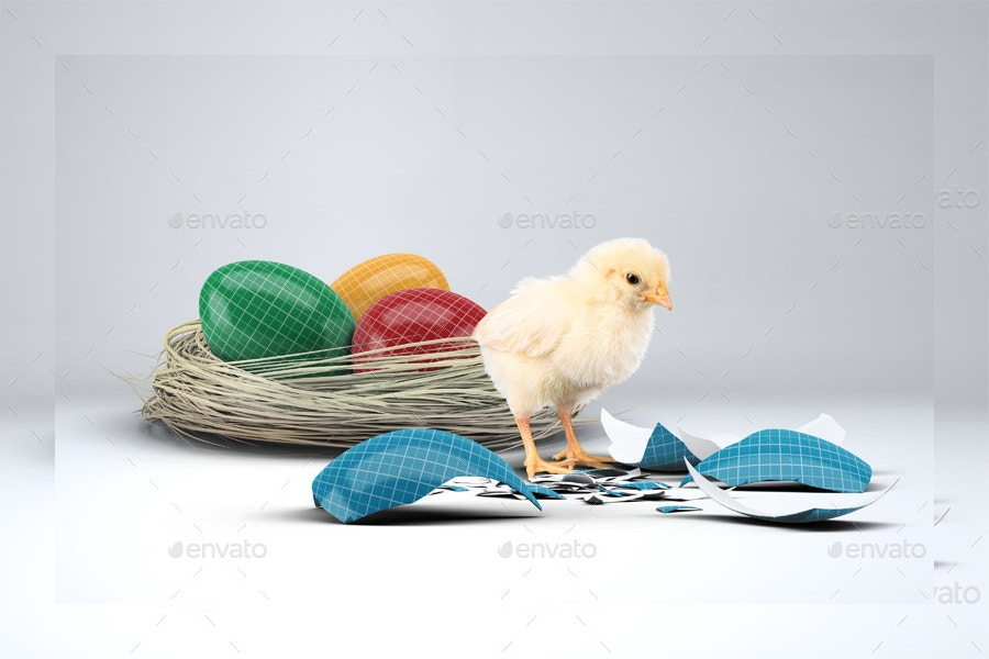 easter eggs with chick mock up