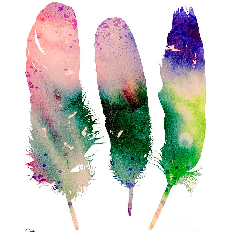 Feathers Paintings with Water Colors