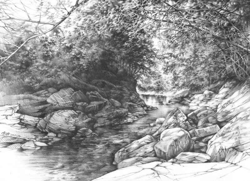 Traditional Nature Drawing