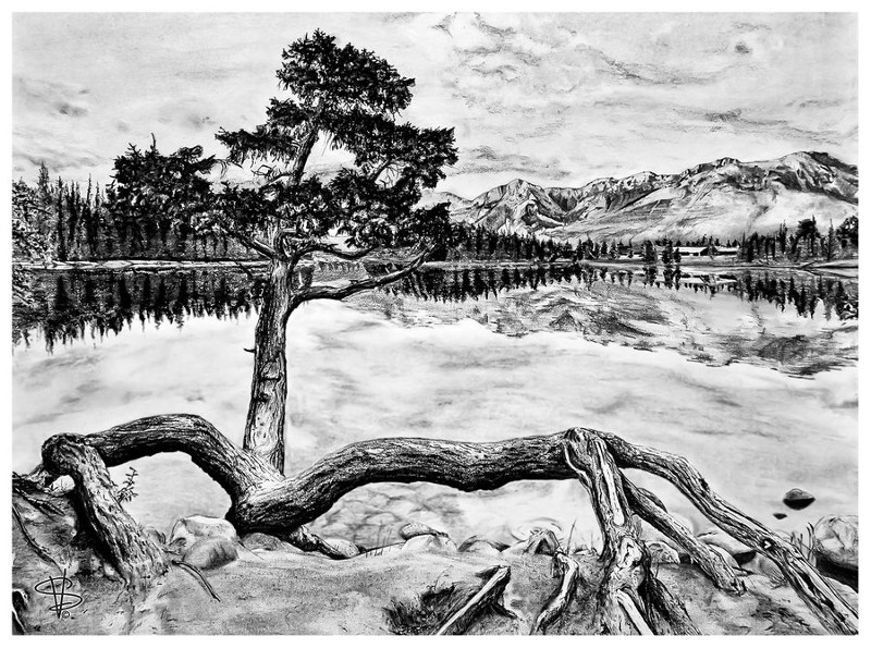 Old Style Nature Drawing