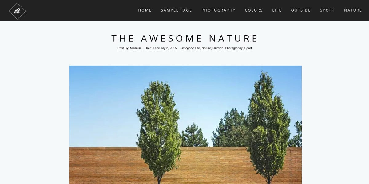 stunning free photography wordpress website theme