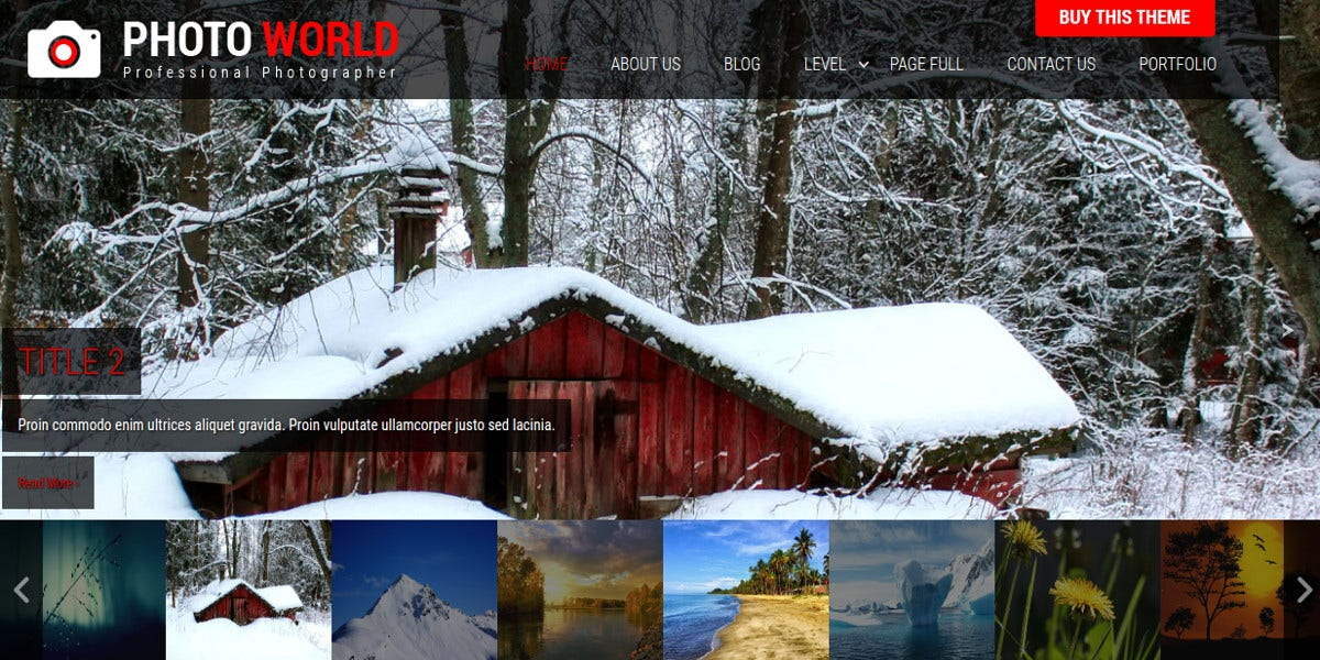 awesome photographer free wordpress website theme