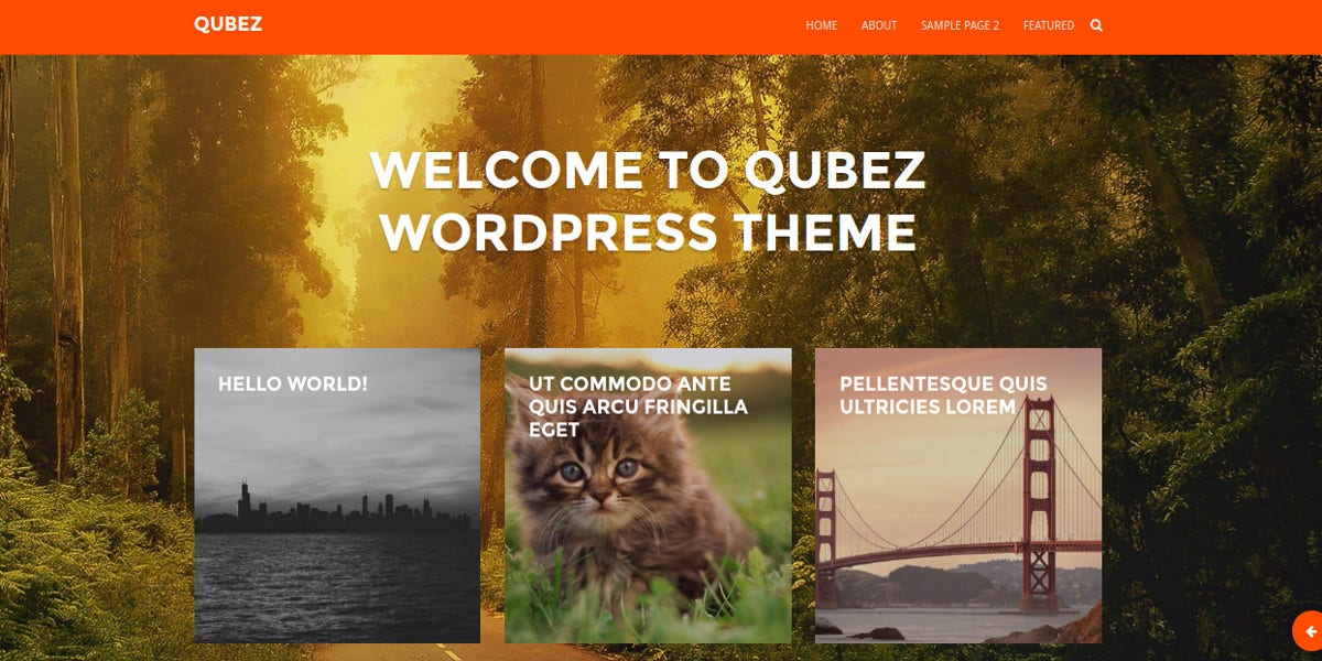 amazing photographer wordpress website theme