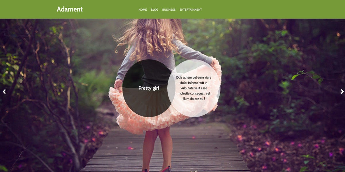 free photography responsive wordpress website theme