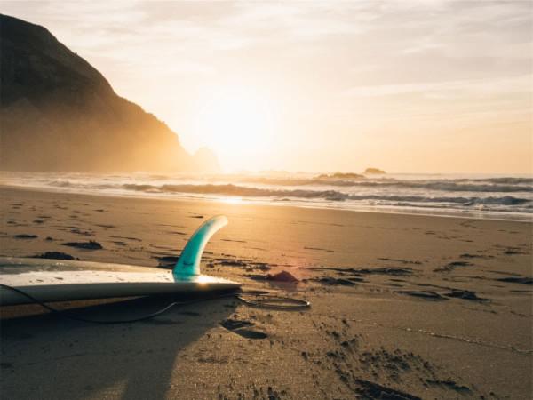 ocean virtue wordpress theme
