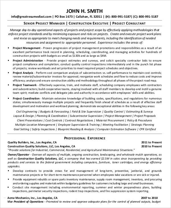 senior project manager resume template in pdf - Project Management Resume Examples