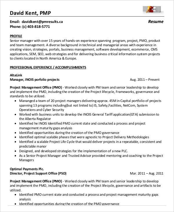 pmp project management resume example
