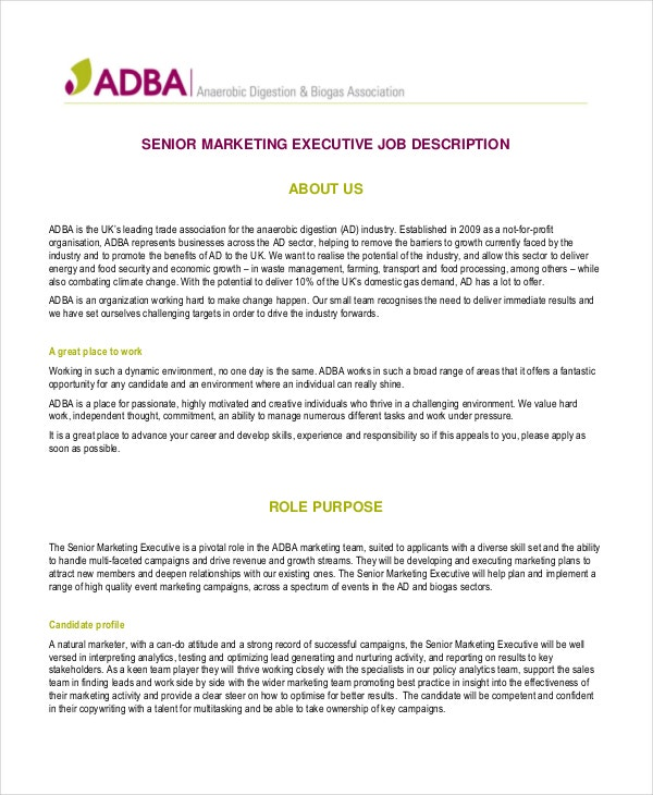 senior-marketing-executive-job-description-in-pdf