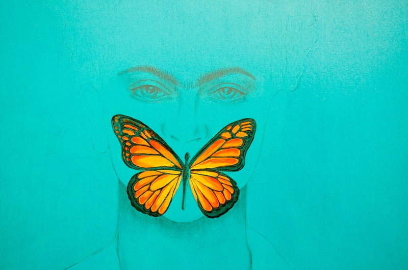 Creative Butterfly Artwork