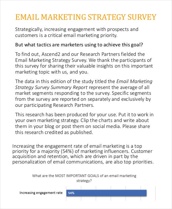 email marketing strategy survey summary report