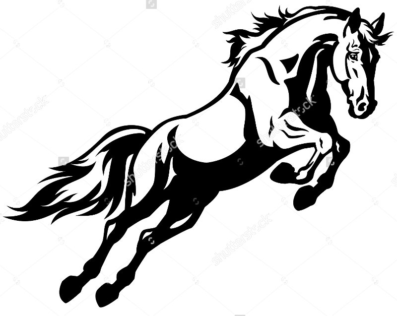 Vector Illustration of Jumping Horse