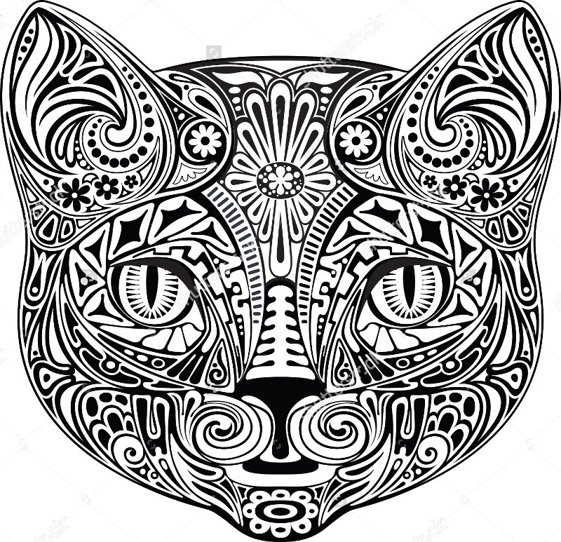 black and white cat illustration