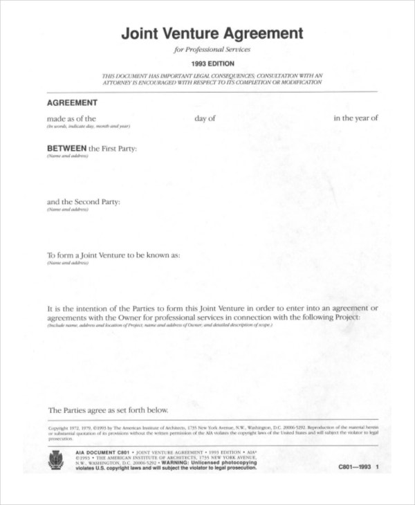 Professional Joint Venture Agreement Sample  Joint Venture Agreement Doc