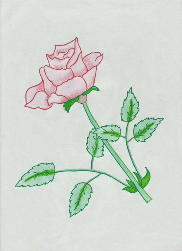 Simple Rose Art Drawing