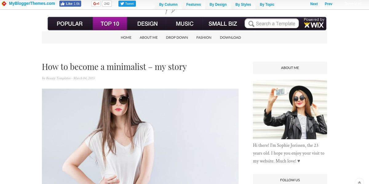 free professional and personal blogger template