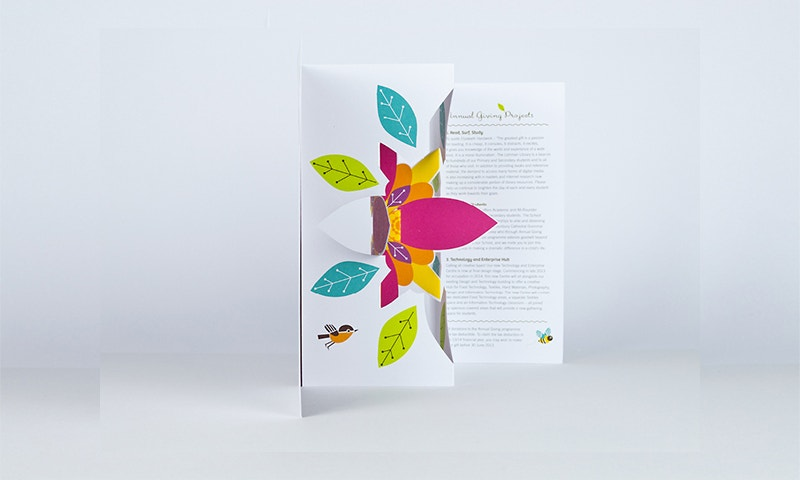 3D Pop-up Brochure by Bronwyn Rogers