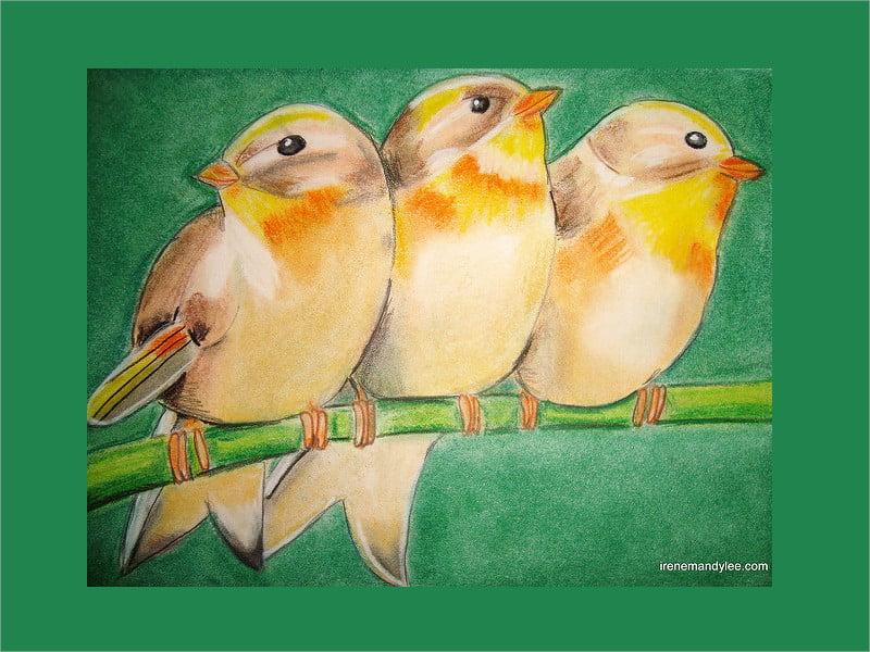 group of birds art work
