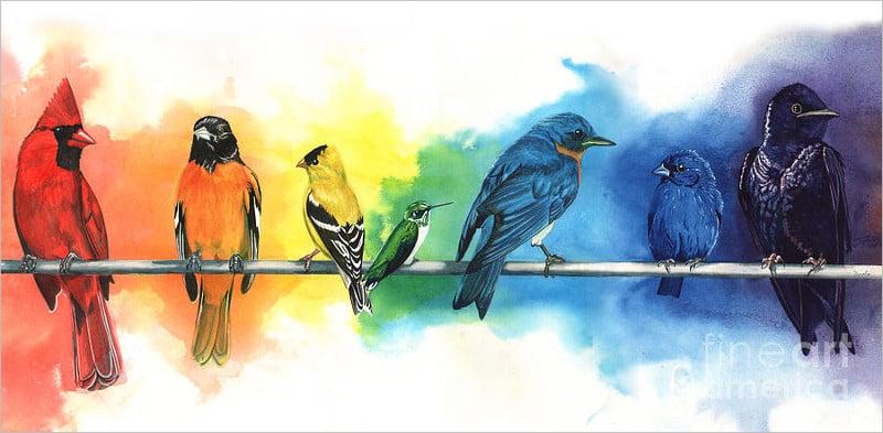 rainbow birds painting