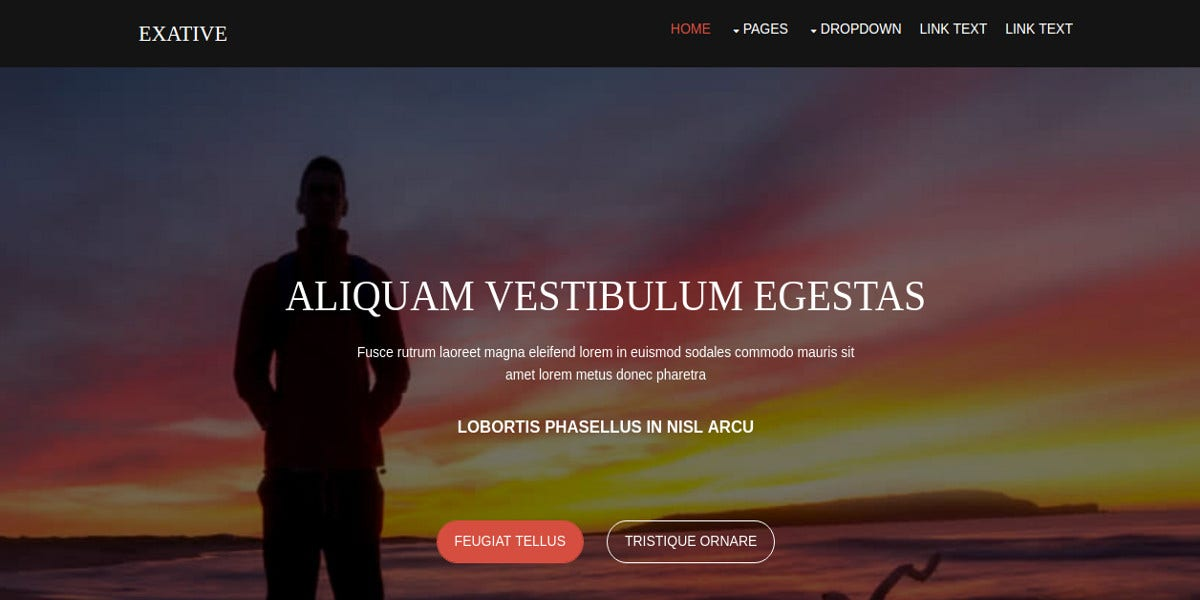 free personal business website template