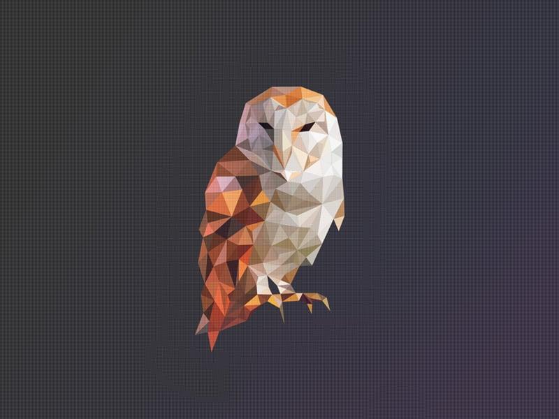 owl logo illustration