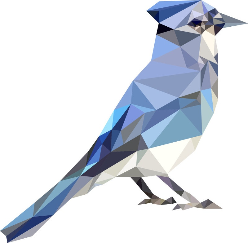 geometric illustration of bird