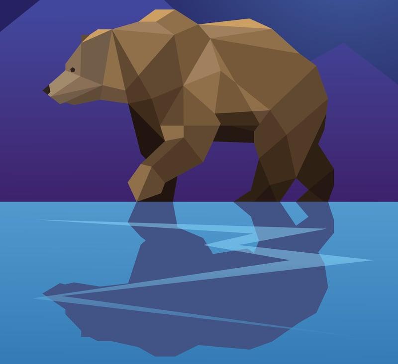 geometric bear illustration