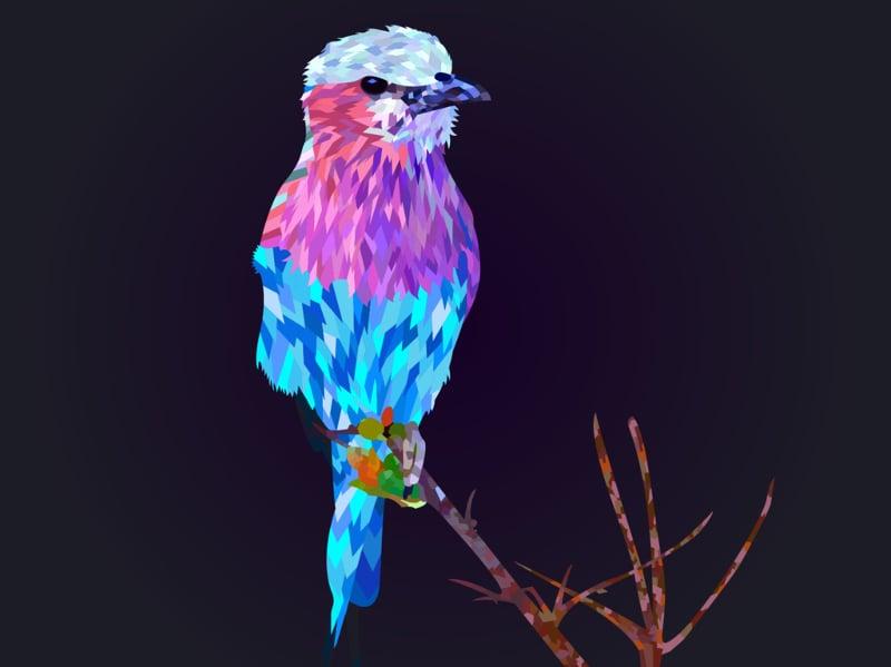 colorful bird geometric art